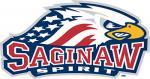 Saginaw Spirit 2017-18 Season Preview